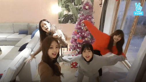 Blackpink House Christmas Pink Tree