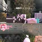Blackpink Lisa Birthday Brightest Lisa Day 2018