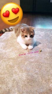 blackpink lisa instagram photo August 2018 Leo