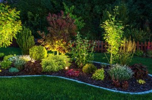 garden illuminated by outdoor LED landscape lighting
