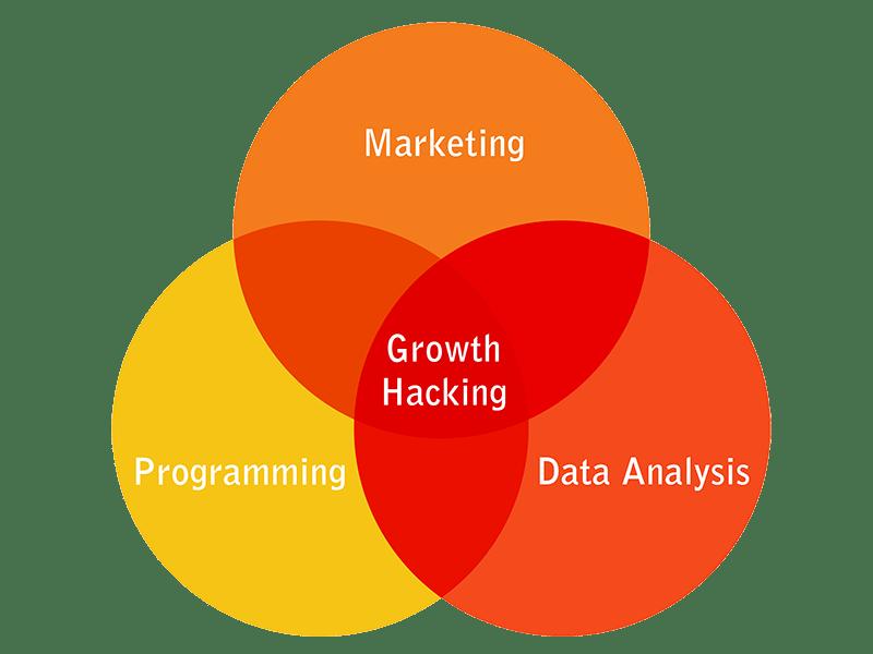 growth hacking is marketing, programming, data analysis