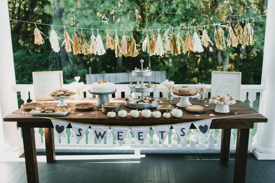 Kristin-Bryan-Wedding-K-B-final-0221 Supporting our BSBs: Stephanie Hall - Palmetto State Belle of Events