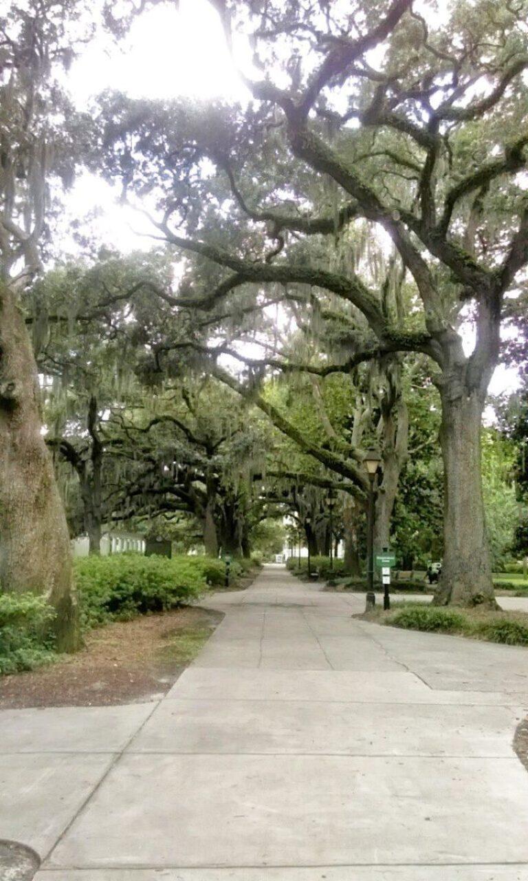 55dcc1248b3c8098736f1e2d A Romantic Getaway: Savannah