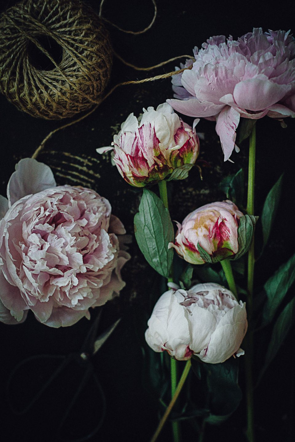 peonies3-960x1440 Celebrate Creativity with a Stylish Midlothian, VA Blogger & DIYer
