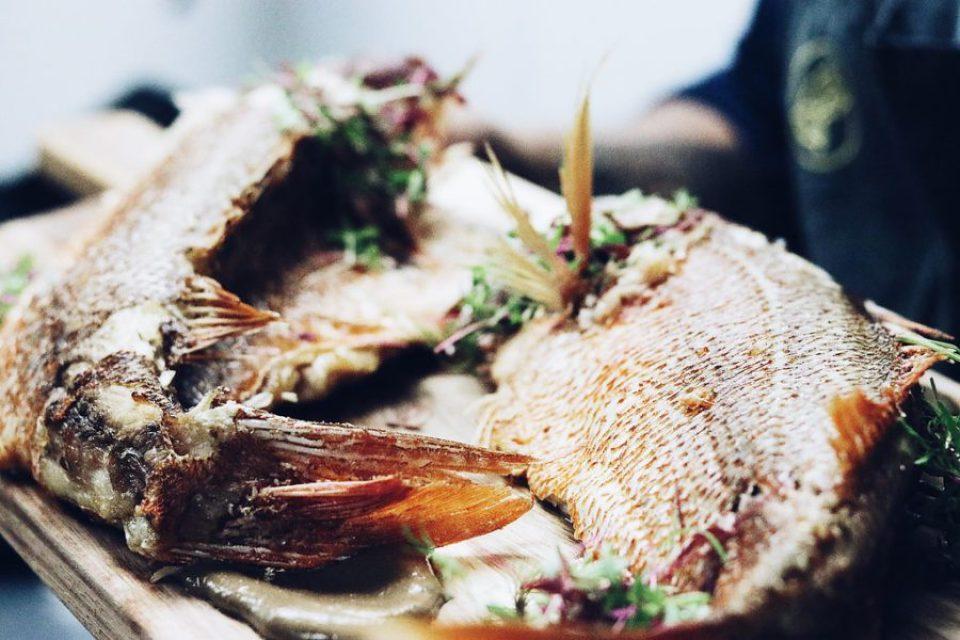 TTEKrankies-3527-960x640 Fall Food Pairings: 6 Fish and Vegetable Pairings for Your Fall Entertaining