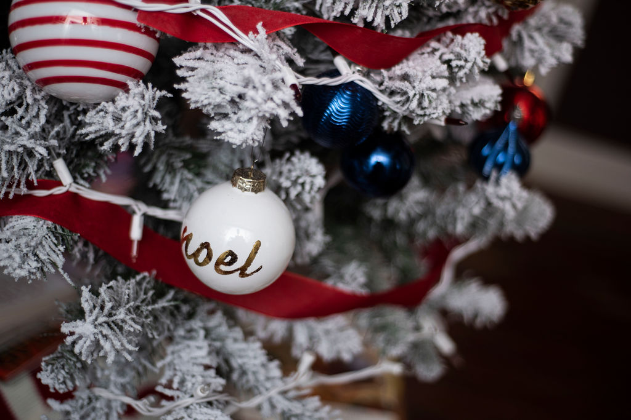 DSC_2884 Patriotic Holiday Decor: Reconstruction Era Holiday Theme