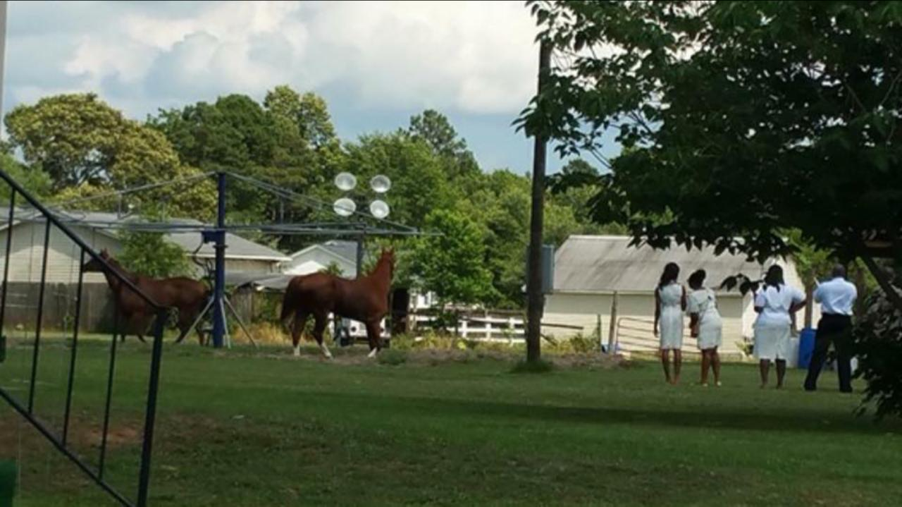 Picture-6 Davis Family Roots in Eutawville, SC: African American Family Writes Book to Preserve Their Family History