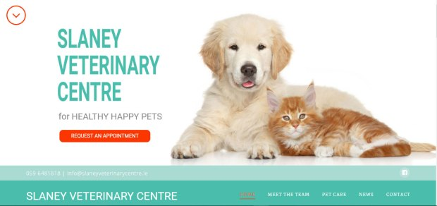 Slaney Veterinary Centre