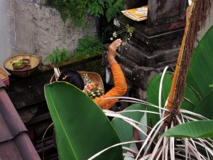 Nyoman from above hand web