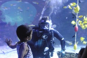 SeaLife Diver interacting with Child visitor