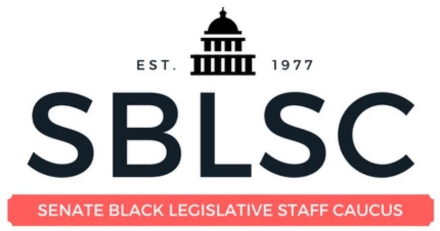 https://i2.wp.com/blacktalentinitiative.com/wp-content/uploads/2020/12/32-SBLSC.png?fit=860%2C452&ssl=1