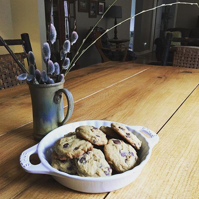 Chocolate Chip Cookies Vacation Mountain Farm Rental