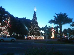 St. Armand's Christmas Lights