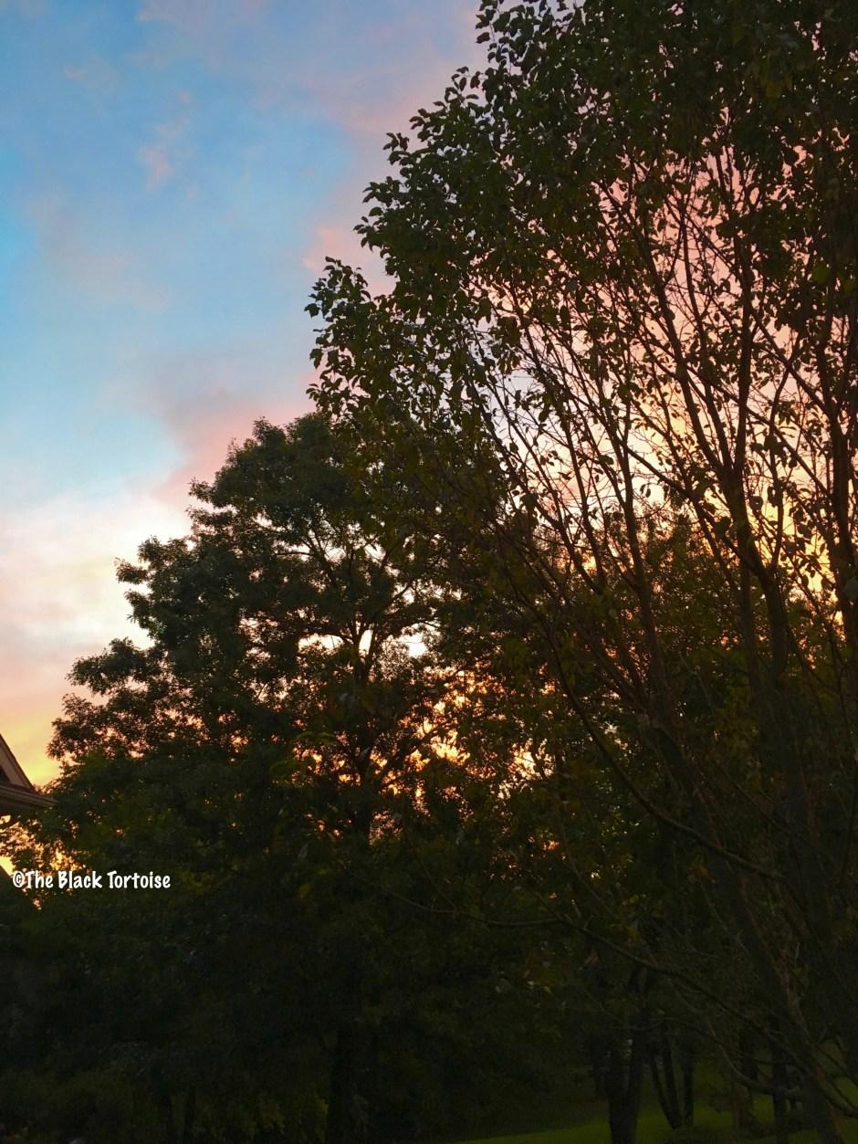 red sky in morning - 3