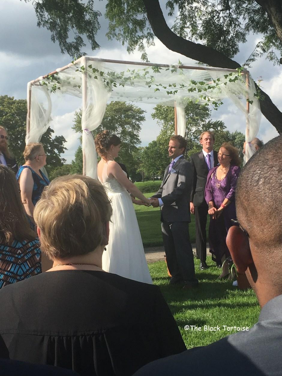 a wedding - 6