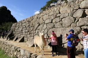 Peru-Heiliges-Tal-Machu-Picchu_14