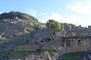 Peru-Heiliges-Tal-Machu-Picchu_16