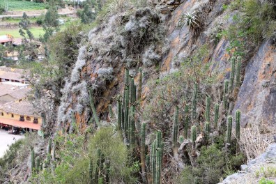 Peru-Heiliges-Tal-Ollantaytambo_6