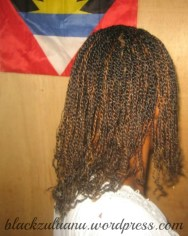 protective style4