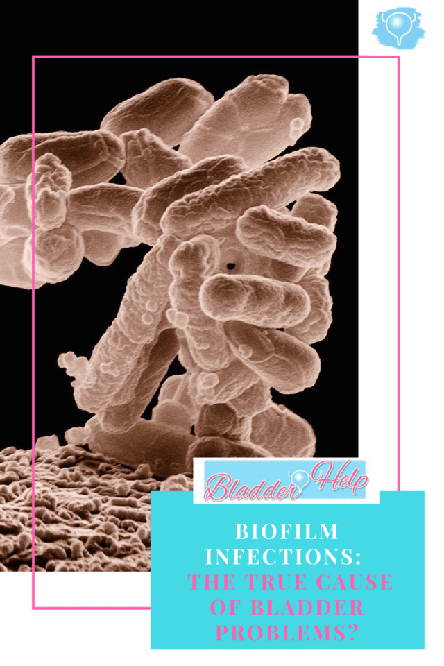 Biofilm infections: The True Cause of Bladder Problems | Bladder-Help.com