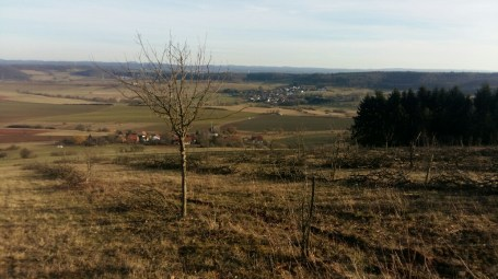 winnweiler-horingen-feb-2017-16