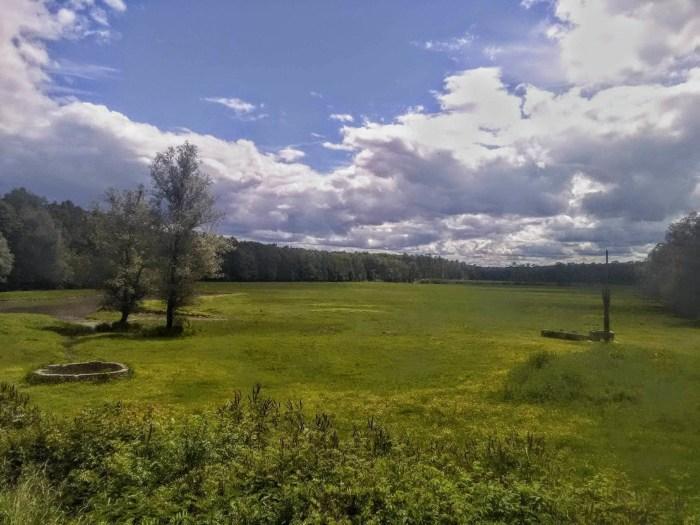 Na čarobnom pašnjaku Iva, prohladna šuma i svježa trava kao da putniku šapću o konjima silnim i danima minulim