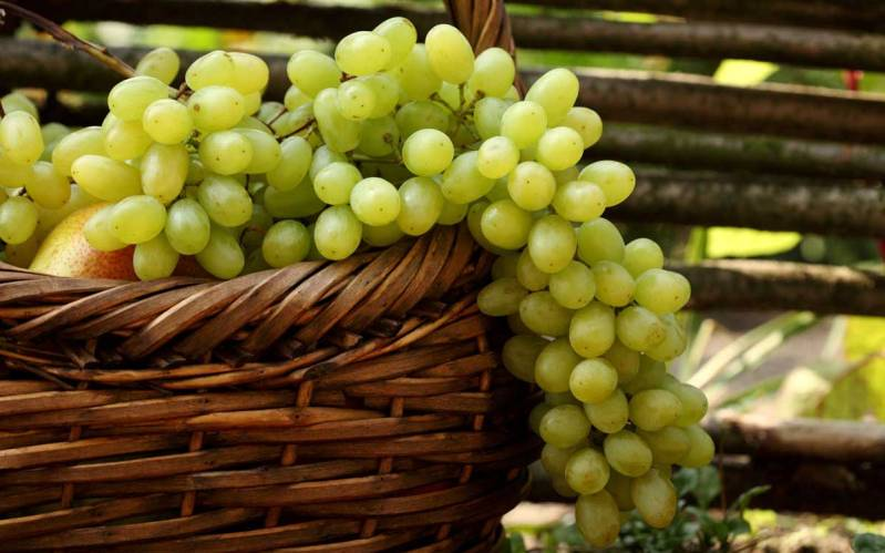 green_grapes_in_basket-wide