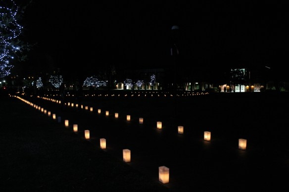 Elon University Luminaries | Blair Blogs