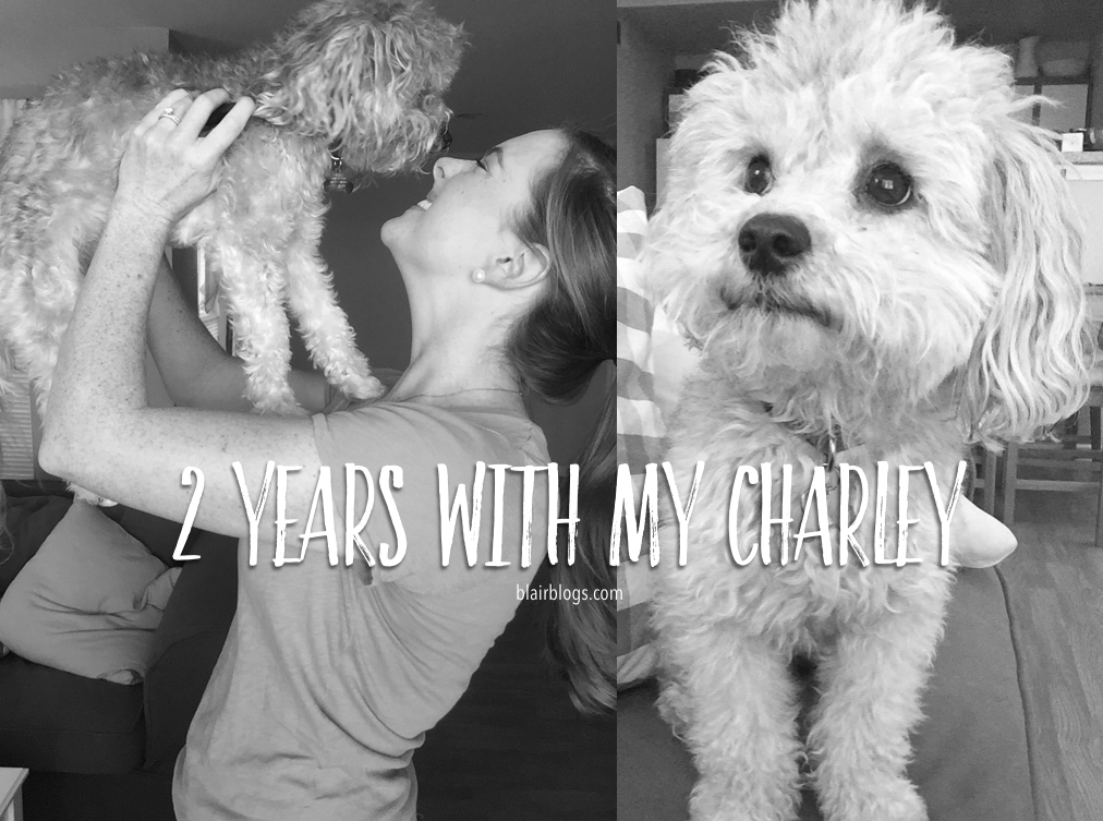 2 Years With My Charley | Blairblogs.com