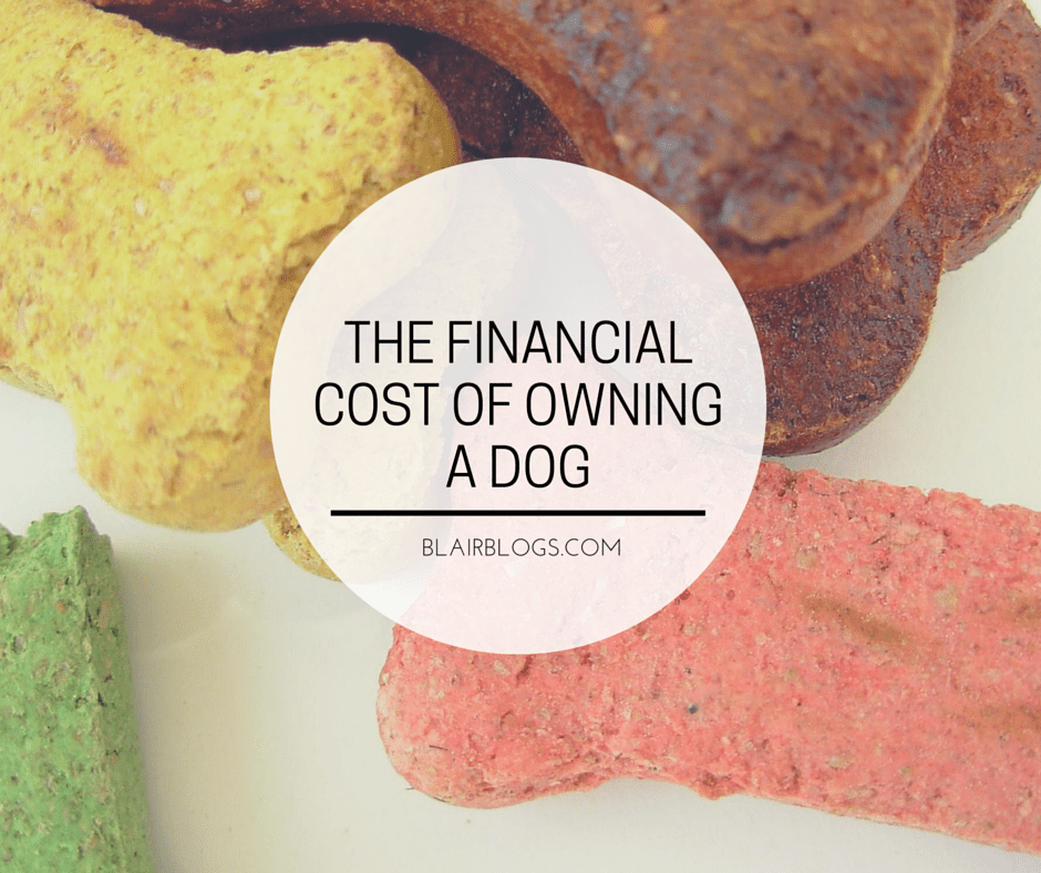 The Financial Cost of Owning a Dog   Blairblogs.com
