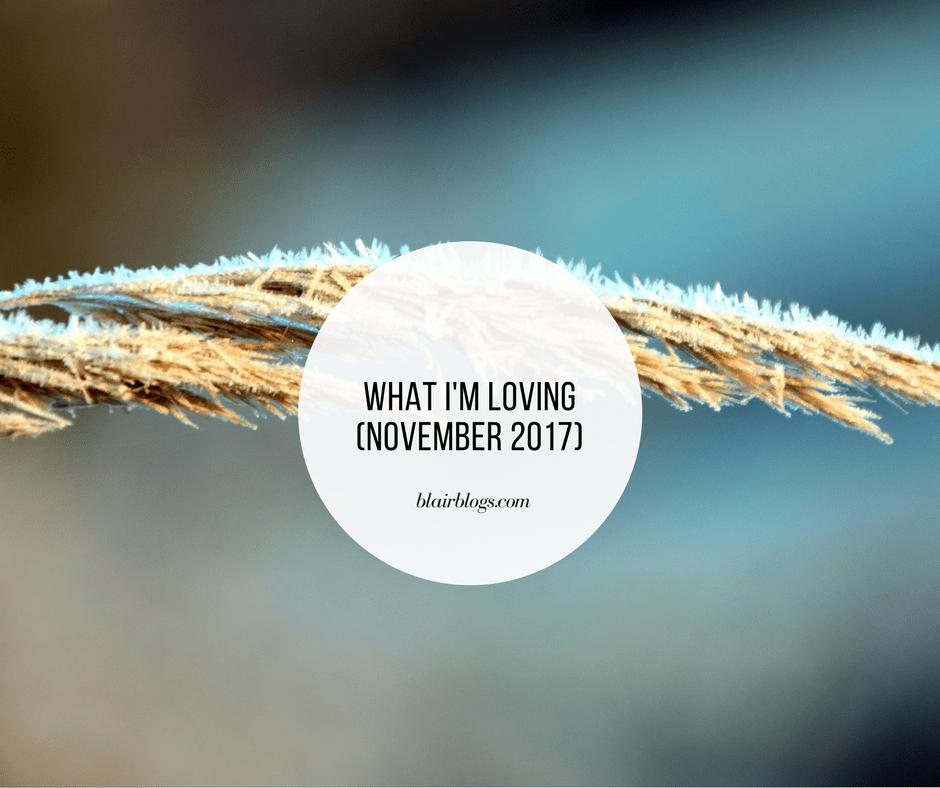 What I'm Loving (November 2017) | Monthly Favorites | BlairBlogs.com