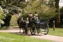 A horse and carriage ride at Arlington Court