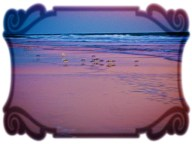 New Art Titled: Seagull in Pink and Blue Seascape at Dawn. Digital art edit from photograph taken facing northeast along the edge of the Atlantic Oceans at dawn on a winter day in Daytona Beach.