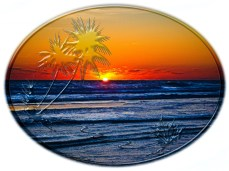 New Art Titled: Sunrise over Atlantic Ocean Palms & Tropical Plants II. Photo art digital edit of the sun rising over the Atlantic Ocean the waves on the beach surrounded by oval with palm trees and tropical plants