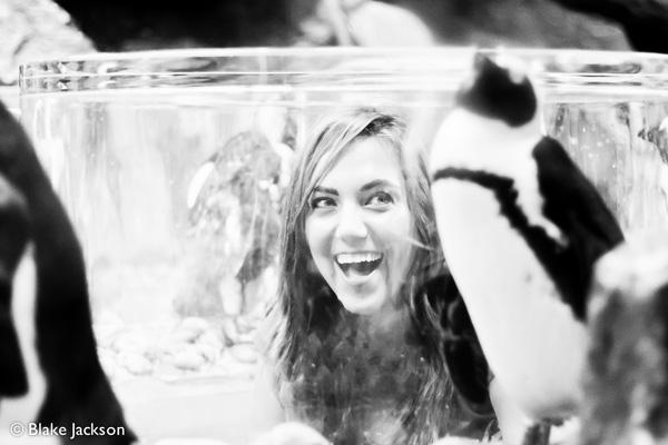 Blake Jackson Creative | Georgia Aquarium (9)