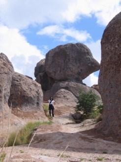 city of rocks NM Brad Nixon 033 (480x640)