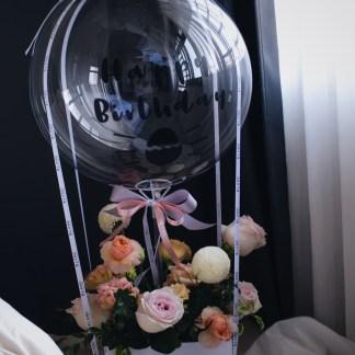 APRICOT | Hot Air Balloon