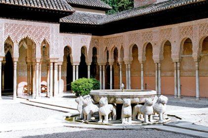patio-leones