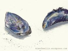 Mussels in Blue (detail) '13