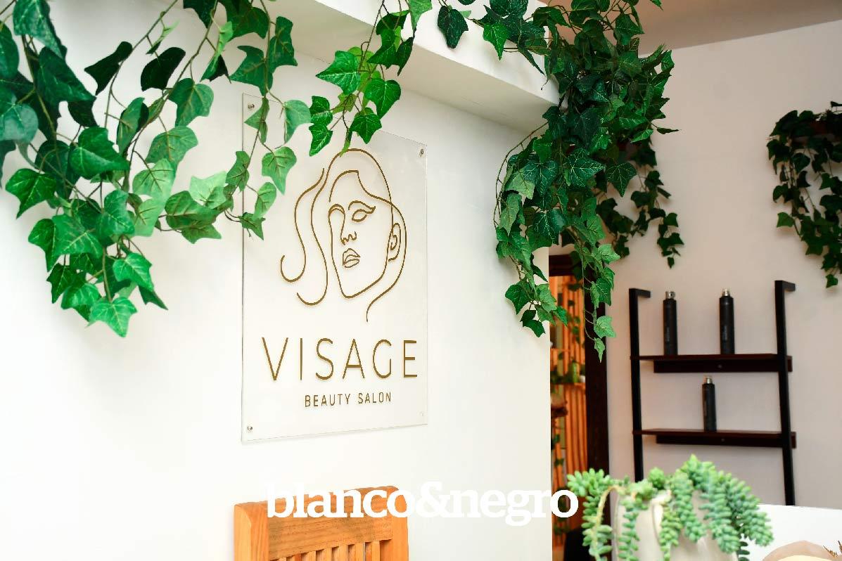 VISAGE-070
