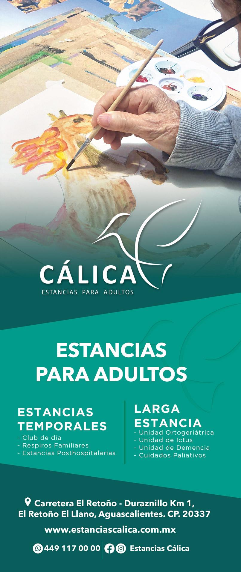 CALICA-MEDIO-VERTICAL