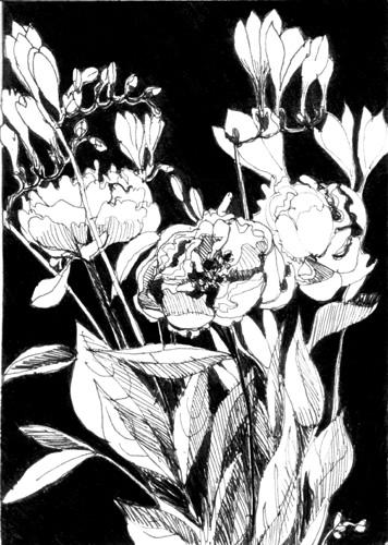 blandine galtier, gravures, estampes, non-toxic, illustration, jeunesse, dessin