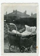 1931 Alec Danskin in Danskin's back garden
