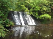 2013 The Big Linn Falls (PV)