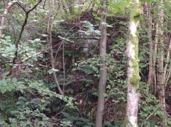 2013 Stone Bridge Abutment at falls