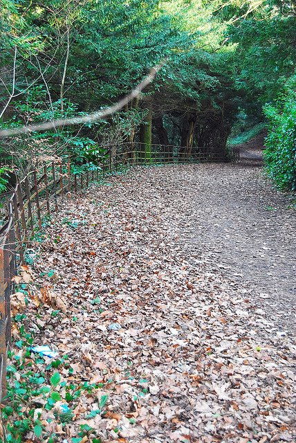 2010 Milheugh Pathway