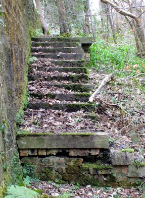 2014 Photo sent in by Robert Stewart on 17th March of the steps leading down from the Priory Bridge to the Black Mill