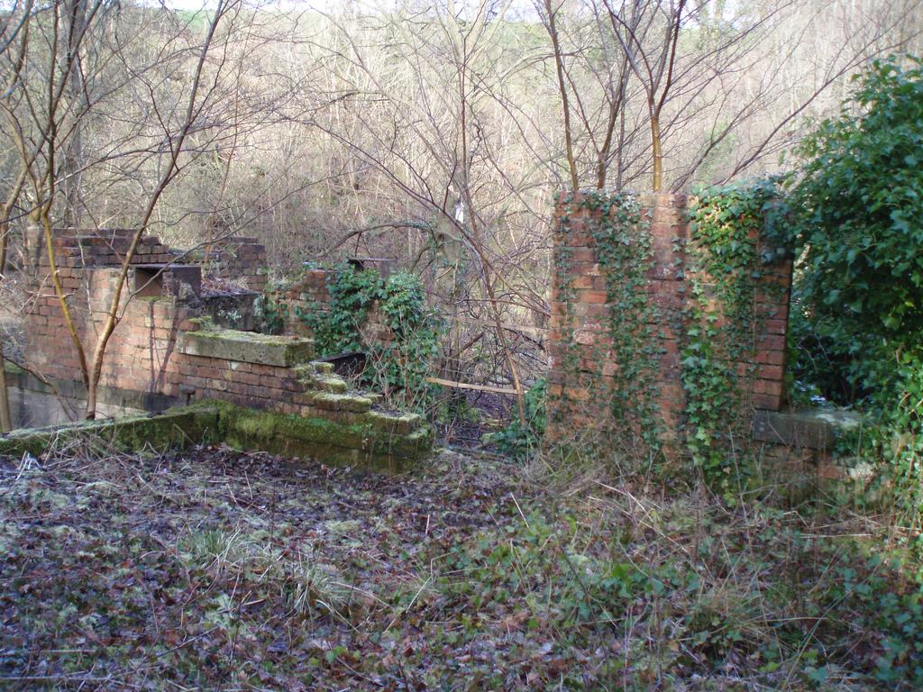 Crossbasket Mill ruins