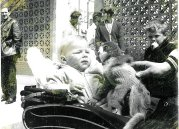 1972 Paul Veverka in pram at Calderpark zoo