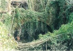 2004 Old Blantyre Mill buildings